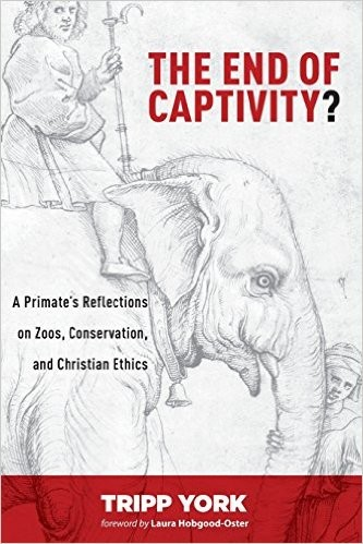 End of Captivity