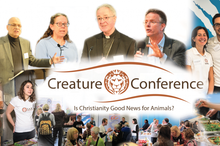 Conference in Picture Banner