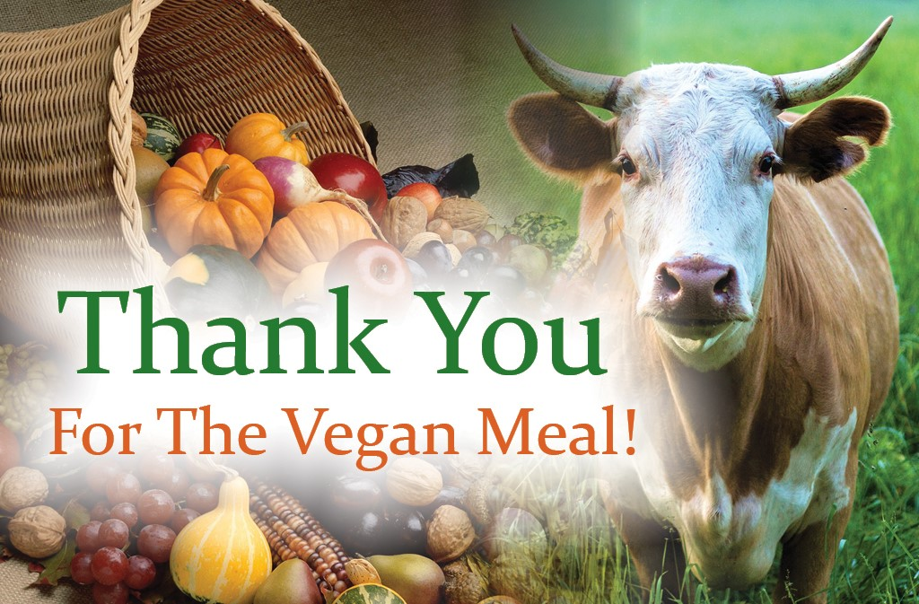 Thank You Vegan v1 Front Cover