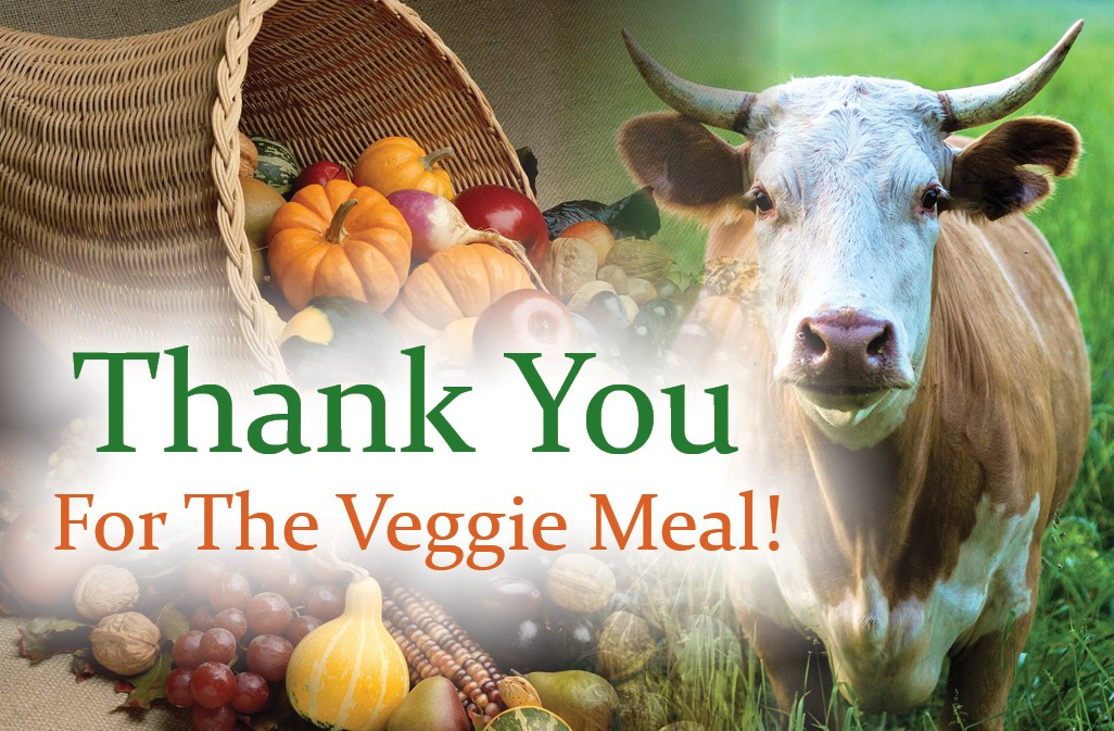 Thank You Veggie v1 front cover