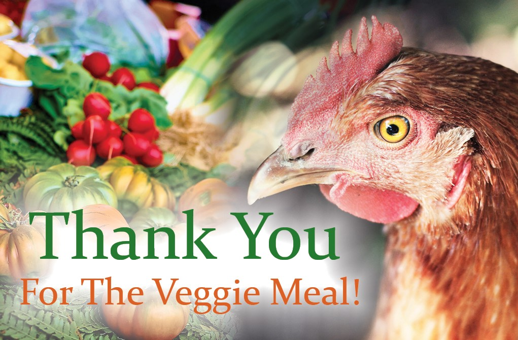 Thank You Veggie v2 Front Cover