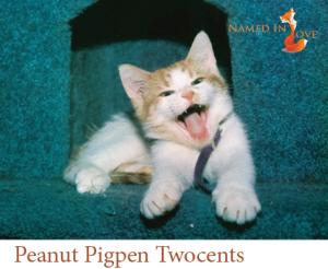 Peanut Pigpen Twocents